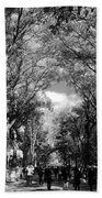 Trees On The Mall In Central Park In Black And White Beach Towel
