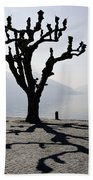 Trees With Shadows Beach Towel