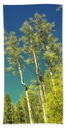 Treetop Color Beach Towel