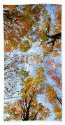 Treetops Beach Towel