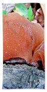 Tremella Mesenterica - Orange Brown Brain Fungus Beach Towel