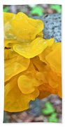 Tremella Mesenterica - Yellow Brain Fungus Beach Towel