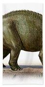 Triceratops Prorsus, A Prehistoric Era Beach Towel