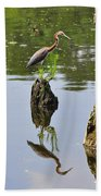 Tricolored Reflection Beach Towel