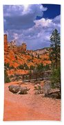 Tropic Canyon In Bryce Canyon Park Beach Towel