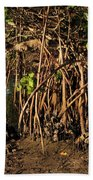 Tropical Mangroves Beach Towel
