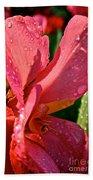 Tropical Rose Canna Lily Beach Towel