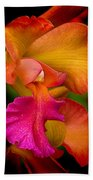 Tropical Splendor Beach Towel