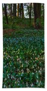 Trout Lilies On Forest Floor Beach Towel by Steve Gadomski