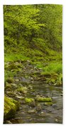 Trout Run Creek 4 Beach Towel