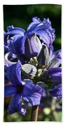 Tube Clematis Blossoms Beach Towel