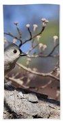 Tufted Titmouse - Bird - Color In Shadows Beach Towel