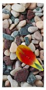 Tulip Petal And Wet Stones Beach Towel