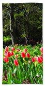 Tulips And Woods Beach Towel