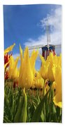 Tulips In A Field And A Windmill At Beach Towel