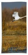 Tundra Flight Beach Towel