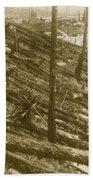 Tunguska Event, 1908 Beach Sheet