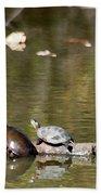 Turtle Print Beach Towel