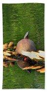 Turtle Sunbathing  Beach Towel