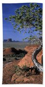 Twisted Tree Monument Valley Beach Towel