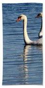 Two Beautiful Swans Beach Towel by Sabrina L Ryan