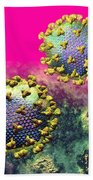 Two Hiv Particles On Hot Pink Beach Towel