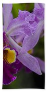 Two Pink Purple Orchids Beach Towel