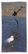 Two Strutting Egrets Beach Towel
