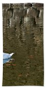 Two Swan Floating On A Pond  Beach Towel