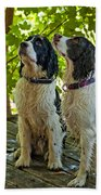 Two Wet Puppies Beach Towel
