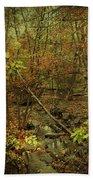 Unami Creek Feeder Stream In Autumn - Green Lane Pa Beach Towel