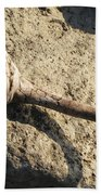 Unusual Driftwood Beach Towel