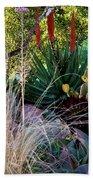 Urban Garden With Cactus Beach Towel