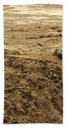 U.s. Army Soldier Fights Racing Water Beach Towel
