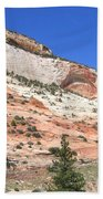 Utah 18 Beach Towel