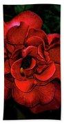 Valentine Rose Beach Towel