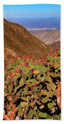 Valle Del Desierto Beach Towel