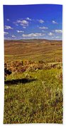 Valley At Fossil Butte Nm Beach Towel