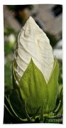 Vanilla Hibiscus Beach Towel