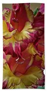 Vibrant Gladiolus Beach Towel by Susan Herber