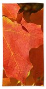 Vibrant Maple Beach Towel