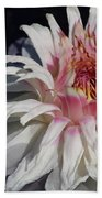 Victoria Water Lily Beach Towel