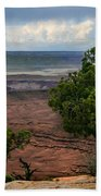 View Of Canyonland Beach Towel