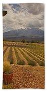 View Toward Mt Shasta Horizontal Beach Towel