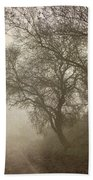 Vigilants Trees In The Misty Road Beach Towel
