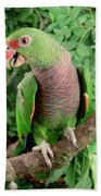 Vinaceous-breasted Parrot Amazona Beach Towel