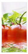 Vine Tomatoes And Salad With Water Beach Towel