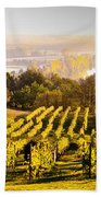Vineyard Beach Towel by Voisin and Phanie and Photo Researchers