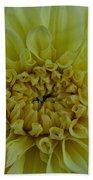 Vivid Yellow Dahlia Beach Towel