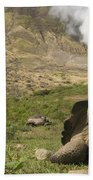 Volcan Alcedo Giant Tortoise Geochelone Beach Towel